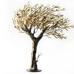 Windswept olive tree